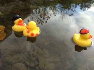 Rubber Duck Doctrine